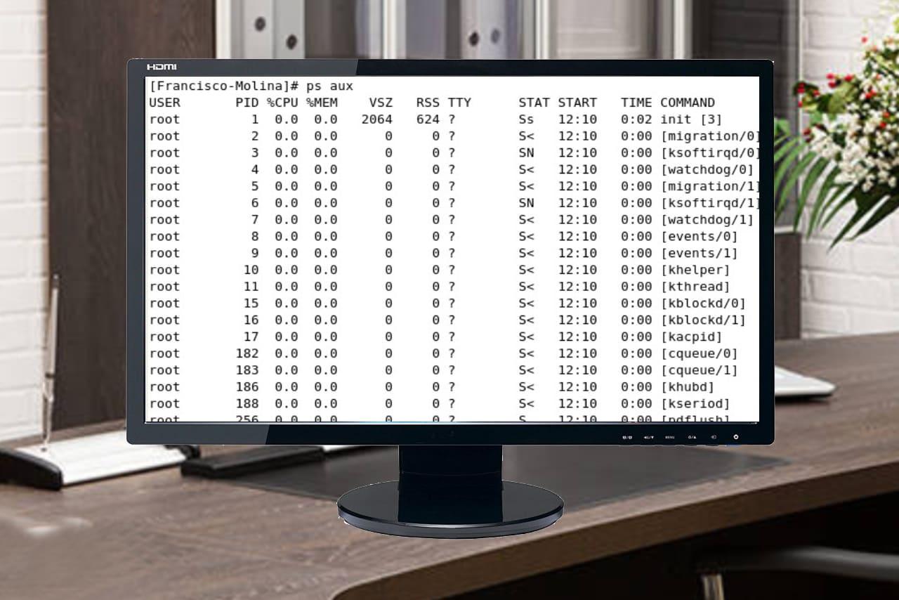Informe de procesos en Linux
